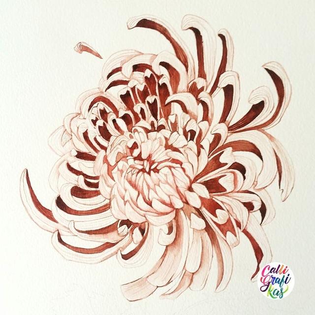 flora52