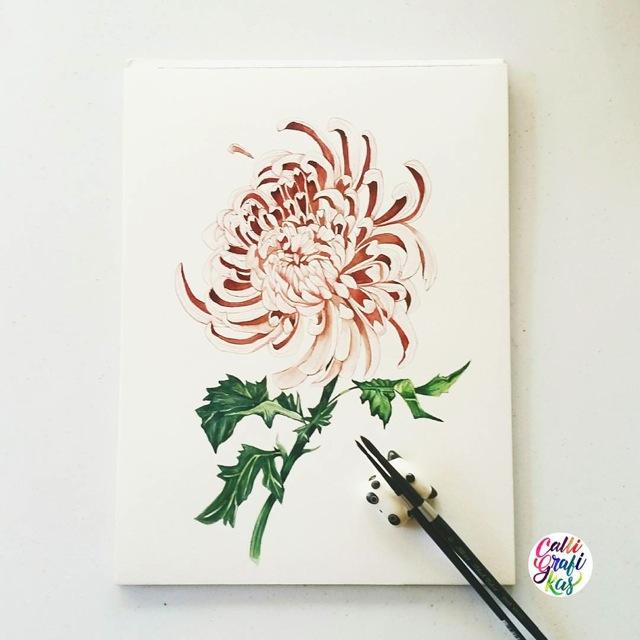 flora53