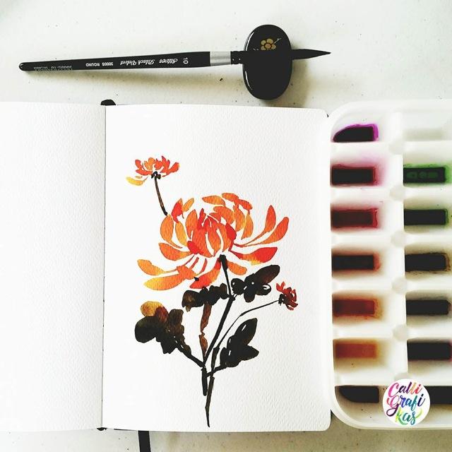 flora54